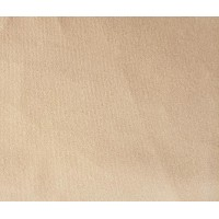Beige Flocked Velvet Fabric